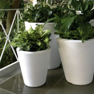 Dot Planters - TruDrop System